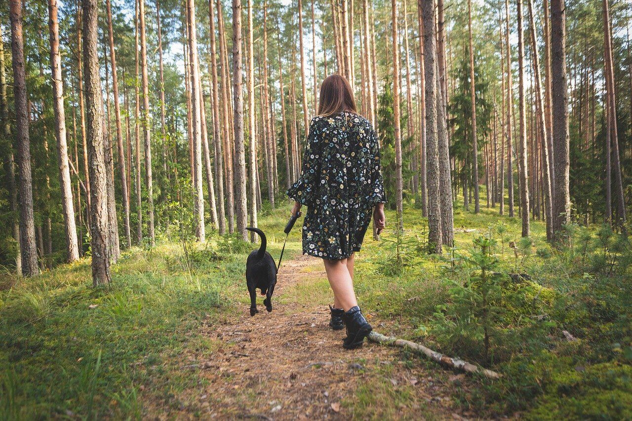 How and Where To Walk Your Dog While Social Distancing